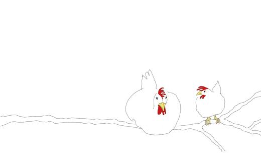 kokblog_chickens