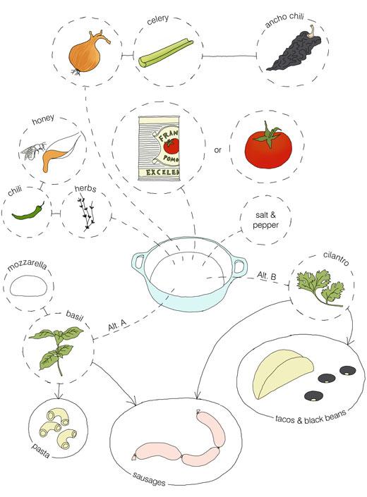 tomato sauce kokblogDiagram Of Tomato #20